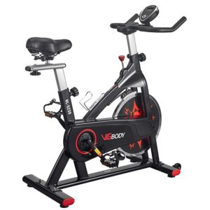 Vigbody Home Spinning Bike